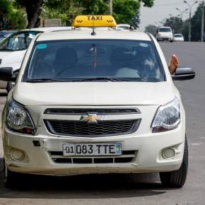 Обновления в Правилах дорожного движения Узбекистана