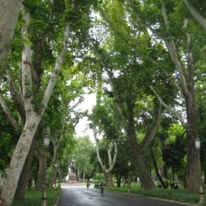 Городу две тысячи лет под светом звезды по имени Солнце - Виктой Цой о Ташкенте